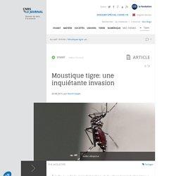 CNRS 20/08/15 LE JOURNAL - Moustique tigre: une inquiétante invasion
