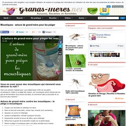 Insecticides r pulsif maison pearltrees - Se debarrasser des moustiques ...