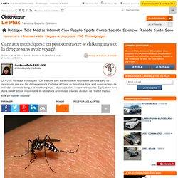 NOUVEL OBS LE PLUS 05/08/13 Gare aux moustiques : on peut contracter le chikungunya ou la dengue sans avoir voyagé