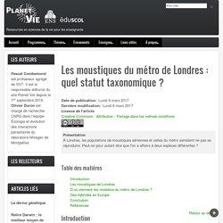 Les moustiques du métro de Londres: quel statut taxonomique?