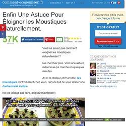 Comment Eloigner les Moustiques Naturellement ?