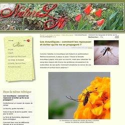 Les moustiques : comment les repousser et éviter qu'ils ne se propagent ? - NatureLN