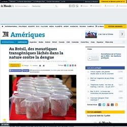 AFP 05/05/15 Au Brésil, des moustiques transgéniques lâchés dans la nature contre la dengue