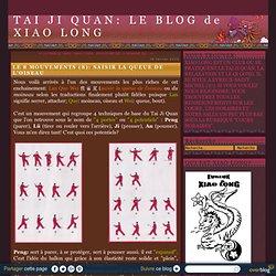 LE 8 MOUVEMENTS (8): SAISIR LA QUEUE DE L'OISEAU - Tai Ji Quan : Le blog de Xiao Long