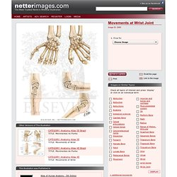 Movements at Wrist Joint - Netter Medical Illustrations