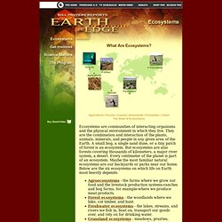 Bill Moyers Reports: Earth on Edge - Ecosystems
