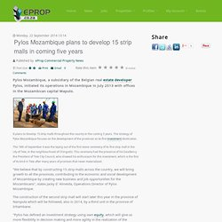 Pylos Mozambique plans to develop 15 strip malls in coming five years - eProp Commercial Property News