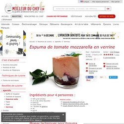 Espuma de tomate mozzarella en verrine - La recette illustrée