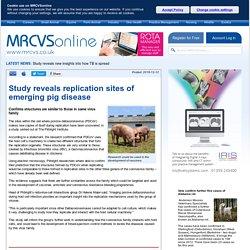 MRCVS_CO_UK 12/12/19 Study reveals replication sites of emerging pig disease - porcine deltacoronavirus (PDCoV)