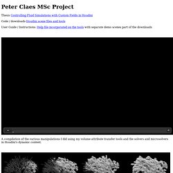 MSc Project Peter Claes