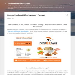 How much food should I feed my puppy?