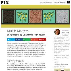 The Benefits of Gardening with Mulch