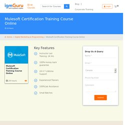 Mulesoft Certification Course
