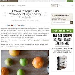 DIY: Mulled Apple Cider, With a Secret Ingredient