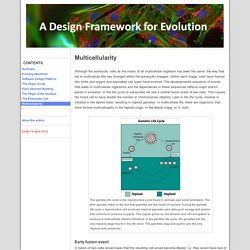 Multicellularity - A Design Framework for Evolution