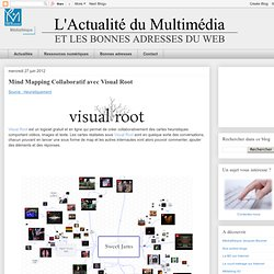 Mind Mapping Collaboratif avec Visual Root
