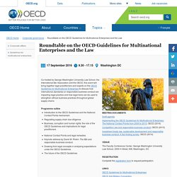 Roundtable on the OECD Guidelines for Multinational Enterprises and the Law