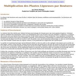 Multiplication des Plantes Ligneuses par Boutures