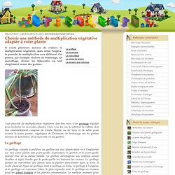 Multiplier les plantes par bouturage et marcottage