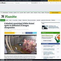 L'abattoir municipal d'Alès fermé après la diffusion d'images choquantes