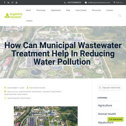 How Can Municipal Wastewater Treatment Help In Reducing Water Pollution