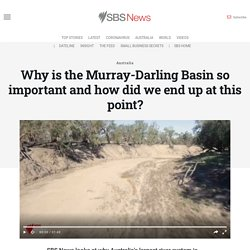 Why is the Murray-Darling Basin so important and how did we end up at this point?