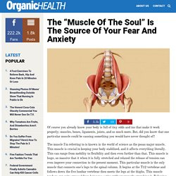 "The ""Muscle Of The Soul"" Is The Source Of Your Fear And Anxiety"