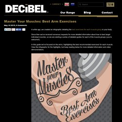 Master Your Muscles: Best Arm Exercises – Decibel Nutrition