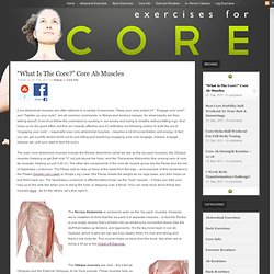 """What Is The Core?"" Core Ab Muscles"