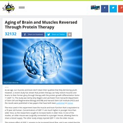 Aging of Brain and Muscles Reversed Through Protein Therapy