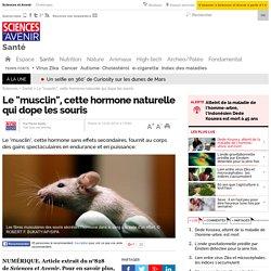 """Le """"musclin"""", cette hormone naturelle qui dope les souris"""