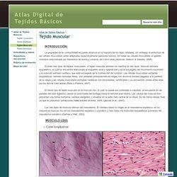 Tejido Muscular - Atlas Digital de Tejidos Básicos