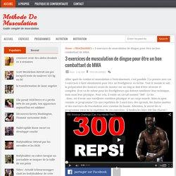 3 exercices de musculation de dingue pour être un bon combattant de MMA « Methode De Musculation