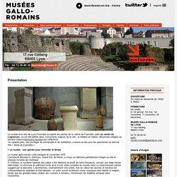 Musées gallo-romains
