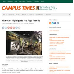 Museum highlights Ice Age fossils