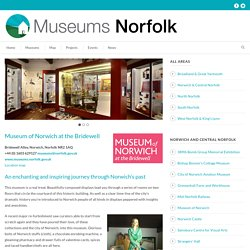 Museums Norfolk » Museum of Norwich