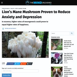 Lion's Mane Mushroom Proven to Reduce Anxiety and Depression