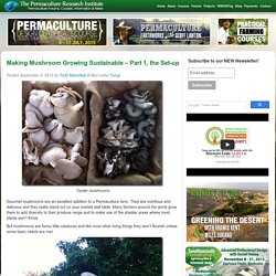 Making Mushroom Growing Sustainable - Part 1, the Set-up