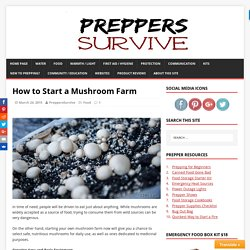 How to Start a Mushroom Farm - Preppers Survive