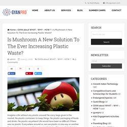 Mushroom the New Solution to Plastics