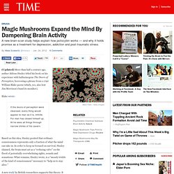Magic Mushrooms Expand the Mind By Dampening Brain Activity, May Help Depression