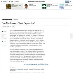 Can Mushrooms Treat Depression?