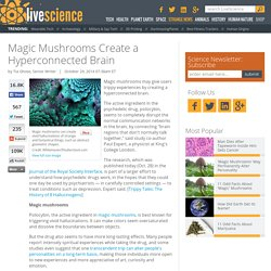 Magic Mushrooms Create a Hyperconnected Brain