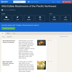 Wild Edible Mushrooms of the Pacific Northwest flashcards