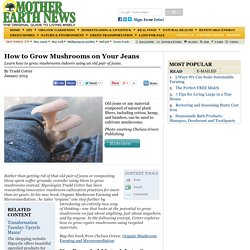 How to Grow Mushrooms on Your Jeans – Organic Gardening – MOTHER EARTH NEWS