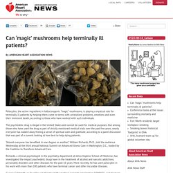 Can 'magic' mushrooms help terminally ill patients? - News on Heart.org