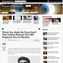 Think You Might Be Tone Deaf? This Online Musical Test Will Diagnose You in Minutes « Vision & Hearing