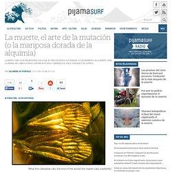 La muerte, el arte de la mutación (o la mariposa dorada de la alquimia