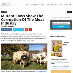 Mutant Cows Show The Corruption Of The Meat Industry