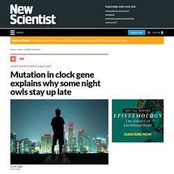 Mutation in clock gene explains why some night owls stay up late